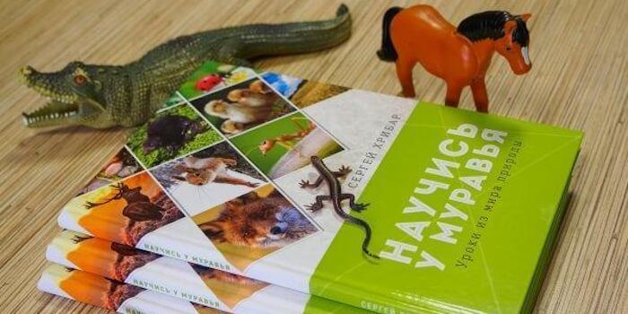 """До книги """"Научись у муравья"""" увійшли 88 заміток, розповідей та притч, які містять духовні уроки зі світу природи"""